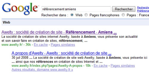 referencement-amiens